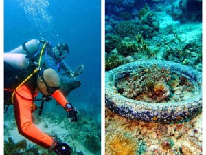 The tyre was left as it had coral growth and was used as a navigational tool for local divers