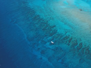 Molasses Reef from the sky. Some sand has shifted to the North. Many of the recognizable Spur and Groove Formations stand strong