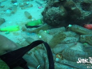 Some of bottles that were washed up onto the dive site.