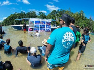 Fundraising for Marine Conservation and Animal Welfare