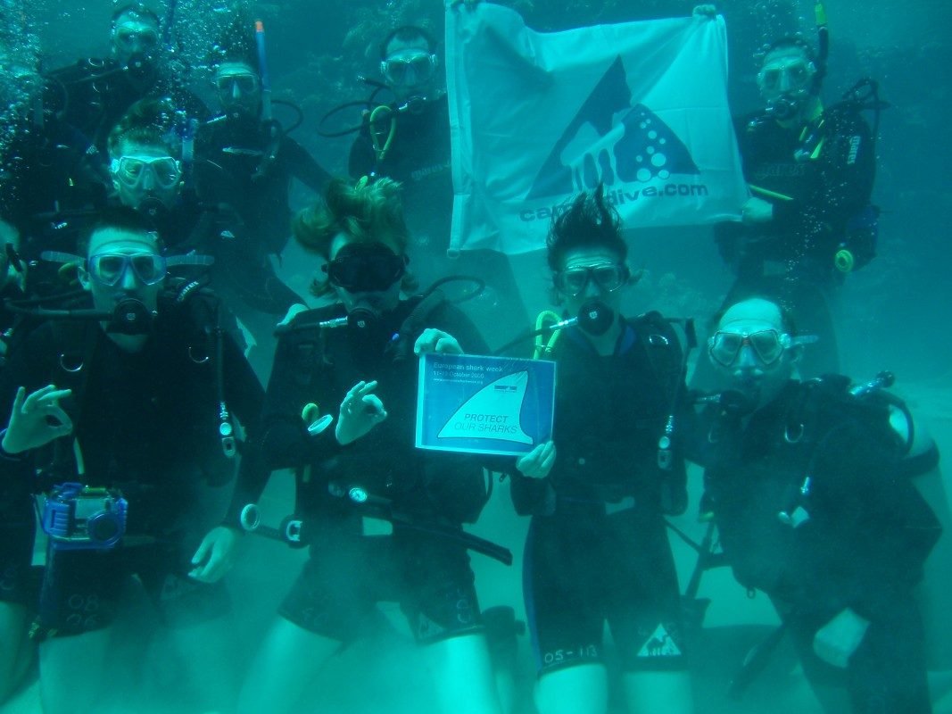 Image of divers with the EU shark finning ban sign