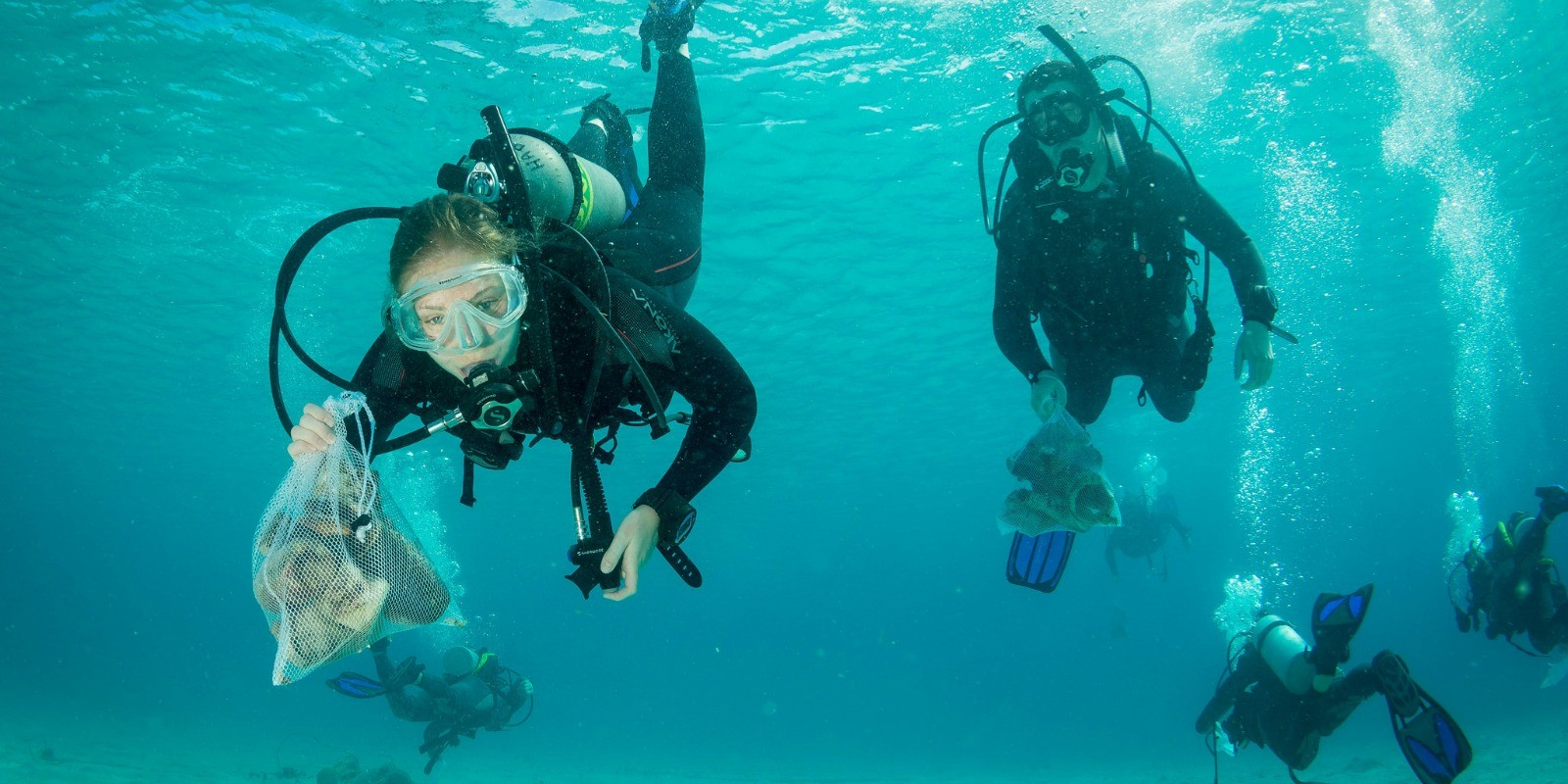Dive Against Debris Group Survey
