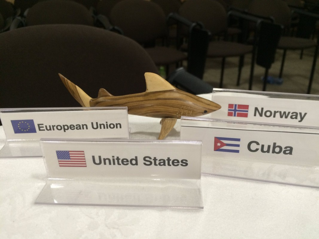 Image of NAFO 2016 by Shark Advocates International