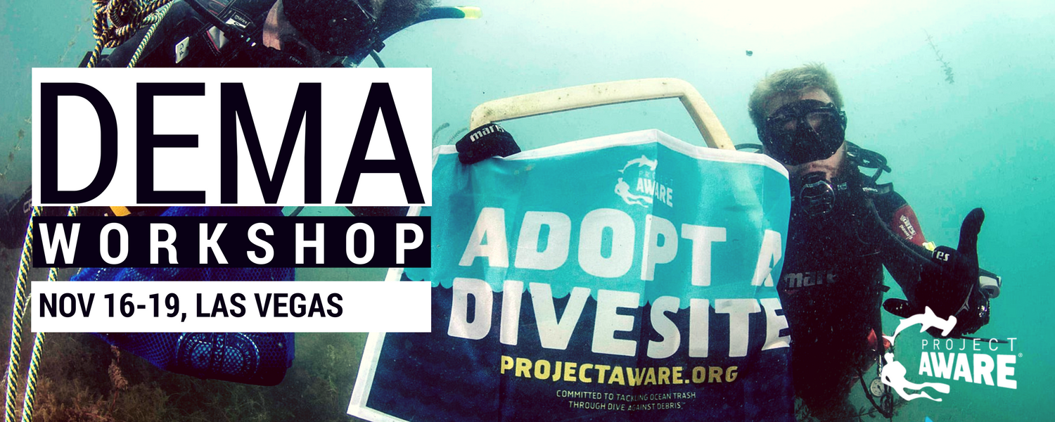 Project AWARE Adopt A Dive Site Workshop at DEMA 2016