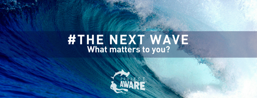 Project AWARE: The Next Wave - What matters to you?