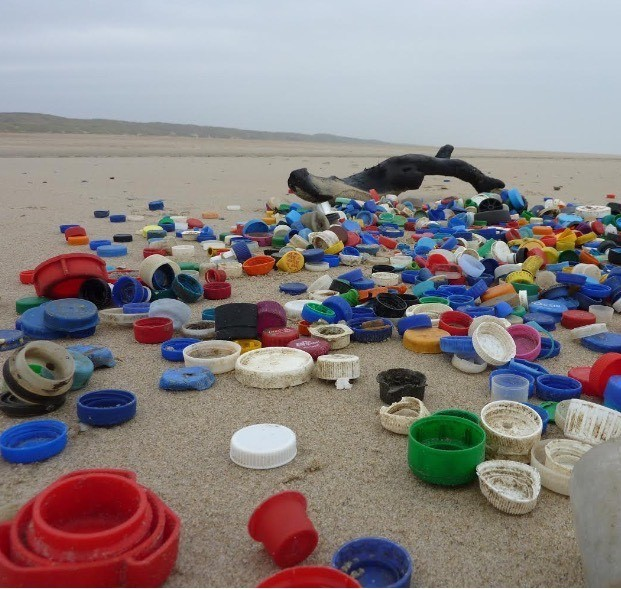 Image of plastic bottle caps beach - The North Sea Foundation