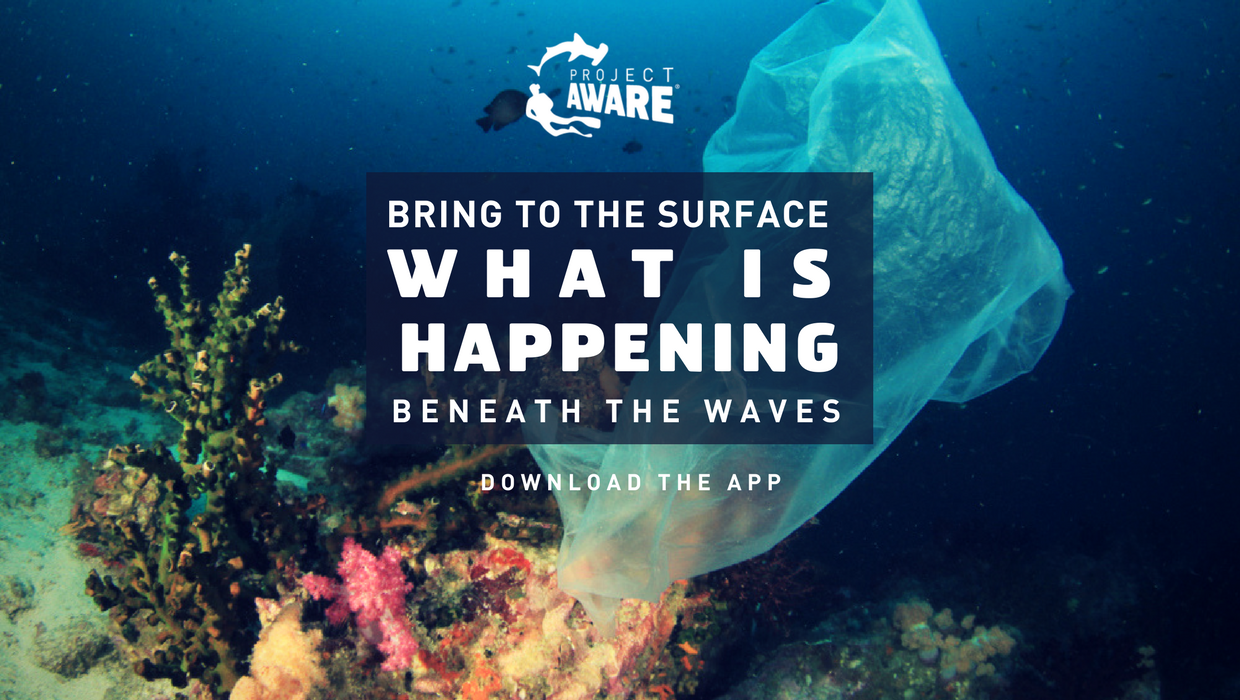 New Project AWARE Dive Against Debris Mobile App