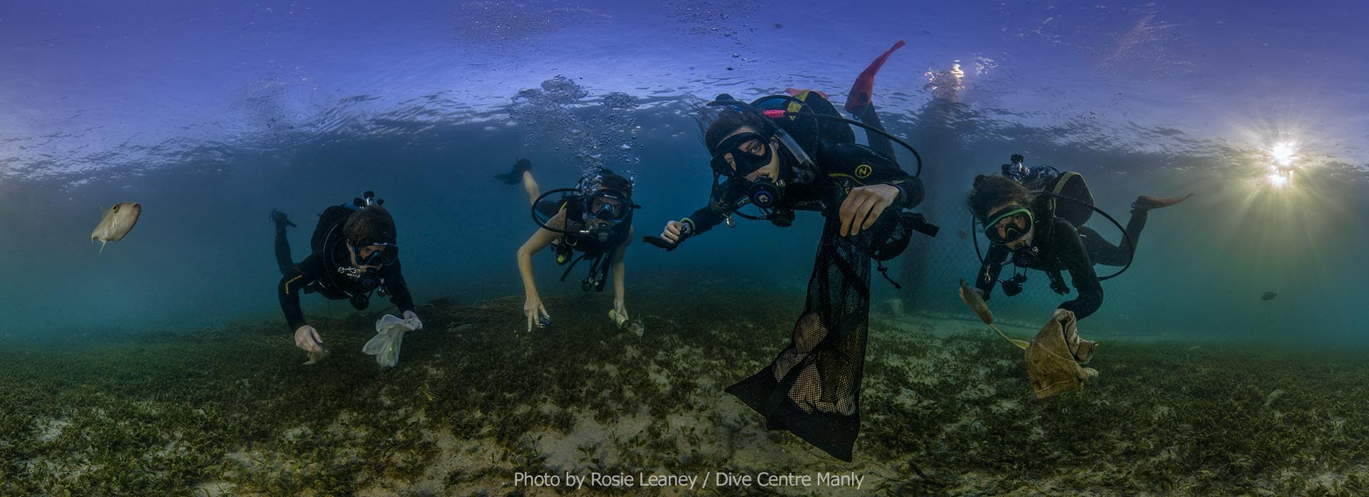 Dive Against Debris World Oceans Day