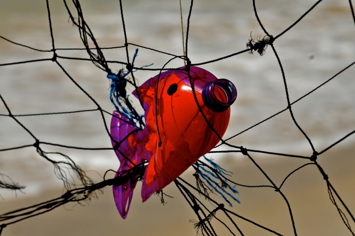 Image of marine debris art