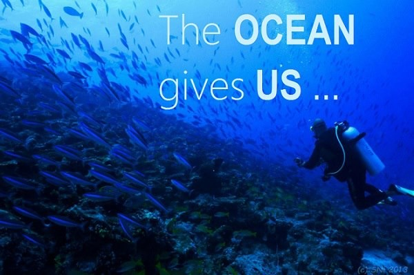Image of Giving Tuesday Ocean
