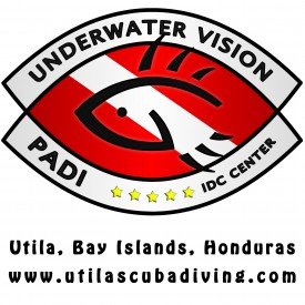 Profile picture for user Underwater Vision