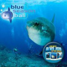 Profile picture for user BlueSeasonBali