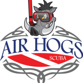 Profile picture for user Air Hogs Scuba