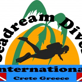 Profile picture for user Seadream Divers International