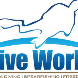 Profile picture for user Dive World Brisbane