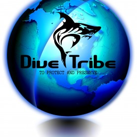 Profile picture for user DiveTribe