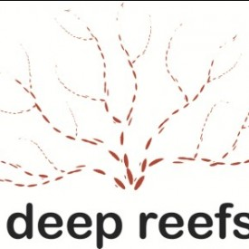 Profile picture for user Deep Reefs