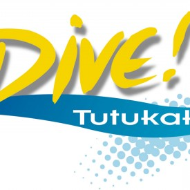 Profile picture for user Dive Tutukaka