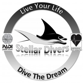 Profile picture for user Stellar Divers