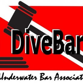 Profile picture for user DiveBar