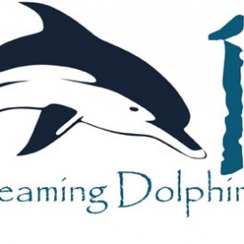 Profile picture for user 13 dreaming dolphins