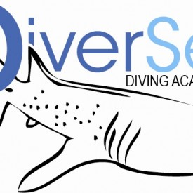 Profile picture for user Diver Sea - Diving Academy