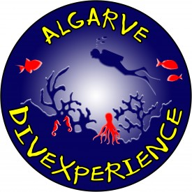 Profile picture for user Algarve Divexperience