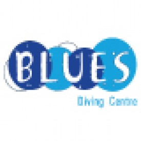 Profile picture for user blues diving