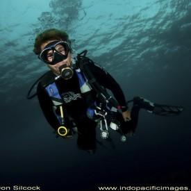 Profile picture for user DiveZone Lombok