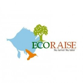 Profile picture for user ECO-RAISE SOCIETY