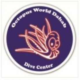 Profile picture for user Octopus World Dahab Dive Center