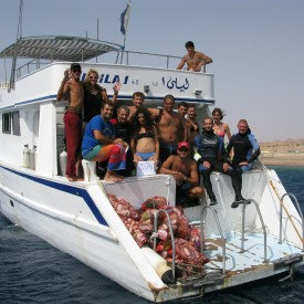 Profile picture for user Dive Aqaba