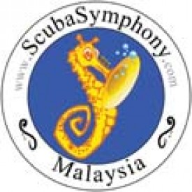Profile picture for user Scuba Symphony