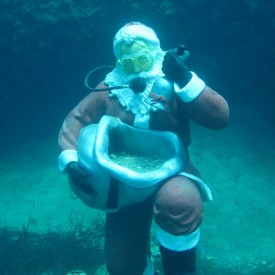 Profile picture for user scuba santa