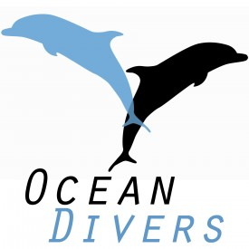 Profile picture for user Ocean Divers