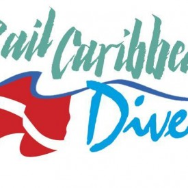 Profile picture for user Sail Caribbean Divers
