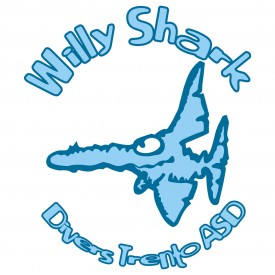Profile picture for user WillyShark