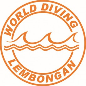 Profile picture for user World Diving Lembongan