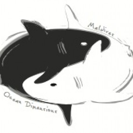 Profile picture for user Ocean Dimensions