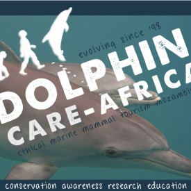 Profile picture for user dolphincareafrica