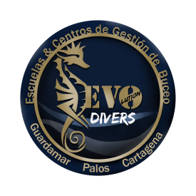 Profile picture for user Evolution Divers