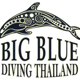 Profile picture for user BigBlueDiving