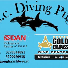 Profile picture for user Diving Puglia