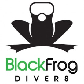 Profile picture for user Black Frog Divers