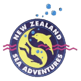Profile picture for user New Zealand Sea Adventures