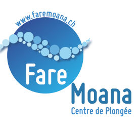Profile picture for user Fare Moana