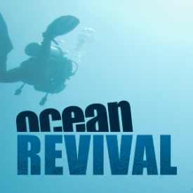 Profile picture for user oceanrevival
