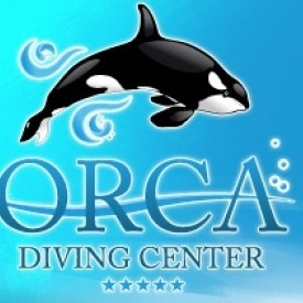 Profile picture for user orcadivingcenter