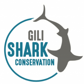 Profile picture for user Gili Shark Conservation