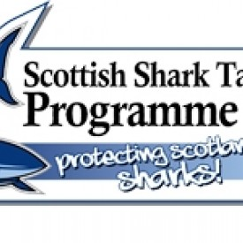 Profile picture for user Scottish Shark Tagging Programme